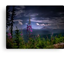 A Touch Of Love Canvas Print