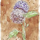 Loving Hydrangeas by Maree  Clarkson