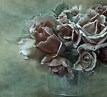 """""""Dreamily Roses ..."""" by Rosehaven"""
