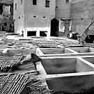 Arabic Tanneries by Victoria Kidgell