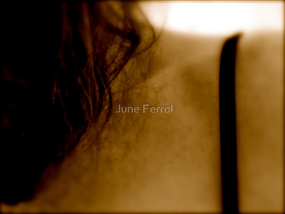 SHE MOVES IN MYSTERIOUS WAYS by June Ferrol
