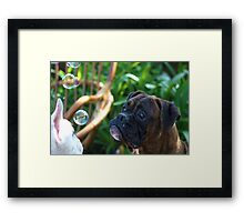 Boxer Dogs and Bubbles Framed Print