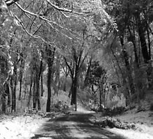 A Long Cold Drive by GMcDermott