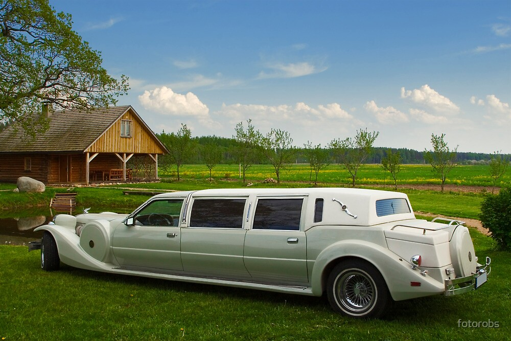 Light limousine in the meadow by fotorobs