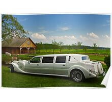 Light limousine in the meadow Poster