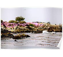 Monterey Landscape  Poster
