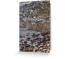 Ebb tide at the Pacific Ocean - Marea baja en el Oceano Pacifico Greeting Card