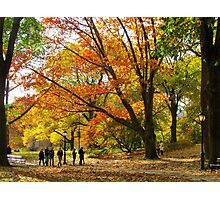A walk in Central Park, New York City Photographic Print