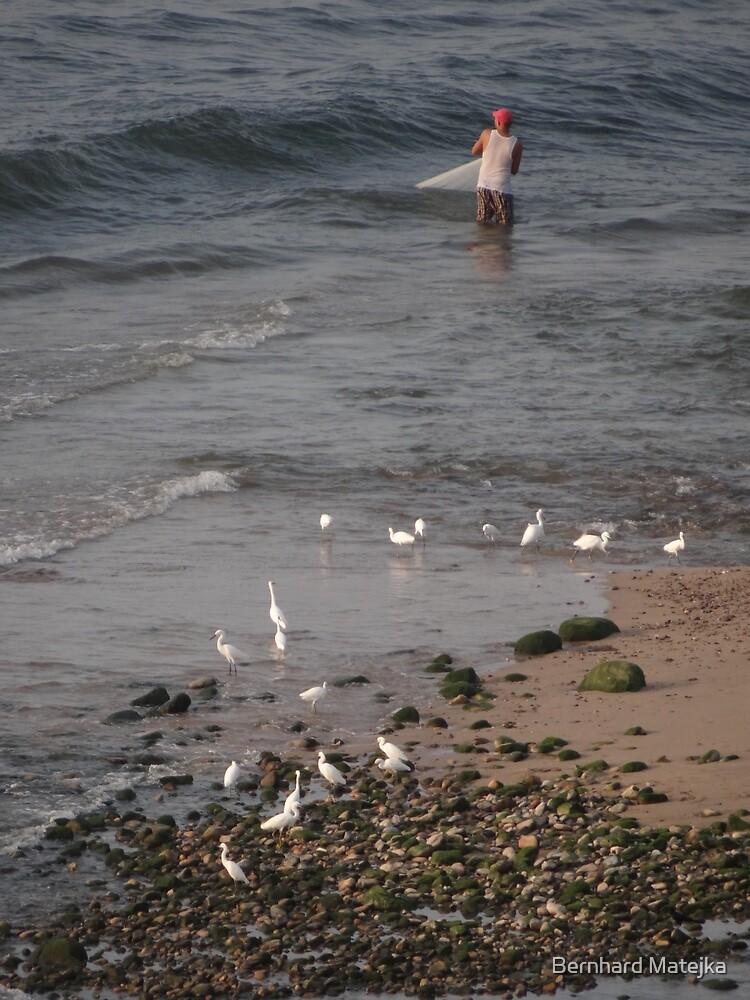 Ebb tide - white herons and a fisherman at the delta of the River Cuale - Marea baja - garzas blancas y un pescador en el delta de Rio Cuale by Bernhard Matejka