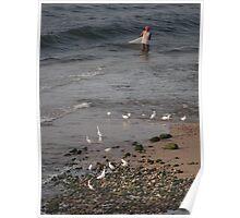 Ebb tide - white herons and a fisherman at the delta of the River Cuale - Marea baja - garzas blancas y un pescador en el delta de Rio Cuale Poster