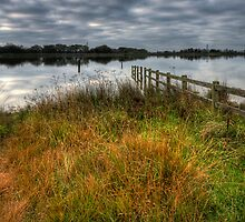 Penyfan Pond  in the Autumn by Steve Purnell