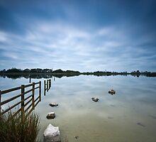 Penyfan Pond 7 by Steve Purnell