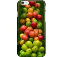 Kona Coffee Cherries on a Branch - iPhone Case iPhone Case/Skin