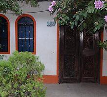 Typical house of the tropical zone - Casa típica para la zona tropical by Bernhard Matejka