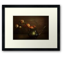 The Warmth of Autumn Light Framed Print