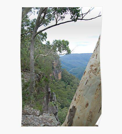 Kangaroo Valley. NSW, Australia Poster