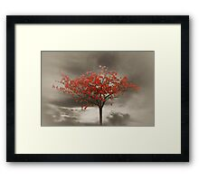 Autumn Red Framed Print