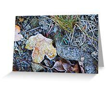 Dead foliage Greeting Card