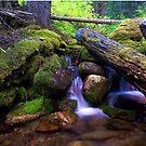 Hillside Waterfall by Rick Louie