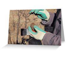 Truffle hunt #6 Greeting Card