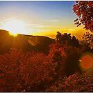 Sunset In The Glen by Chet  King
