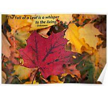 Colored Leaf Poster
