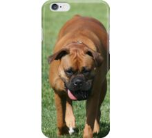 Boxer Dog iPhone Case/Skin