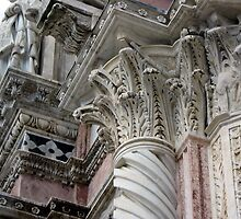 Siena Cathedral 3 by Fara