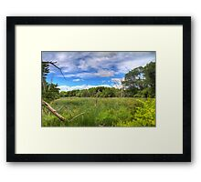 Waterfront Trail HDR I  Framed Print