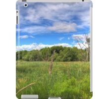 Waterfront Trail HDR I  iPad Case/Skin