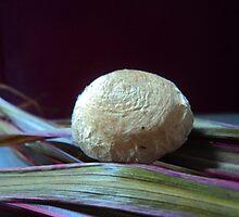 tiny, weeny, spider's nest... by mariatheresa