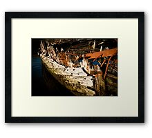 Past It's Prime Framed Print