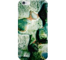 Sea-washed rocks, Point Lobos iPhone Case/Skin