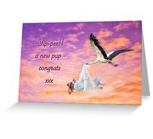 New fur baby congratulations Greeting Card