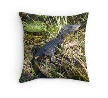 Baby Alligator - Everglades National Park Throw Pillow
