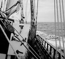 Getting Sea Legs by tunna