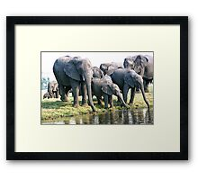 The Family That Drinks Together... Framed Print