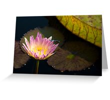 Water Lily and Dragonfly Greeting Card