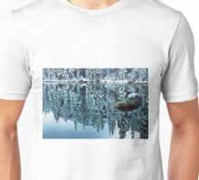 Snow Mirror Unisex T-Shirt
