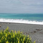 Coastline on the way to Picton NZ by Alison Murphy