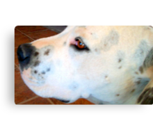 Freckles Says I Love You Canvas Print