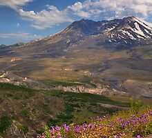 Toutle River Valley - Mt. St. Helens by JamesA1