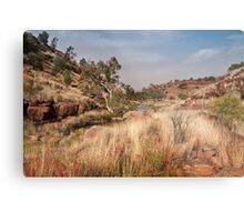 Tupul landscape, central Australia Metal Print