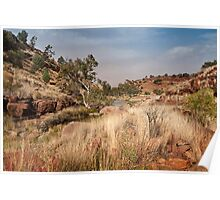 Tupul landscape, central Australia Poster