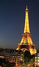 Eiffel at night by collpics