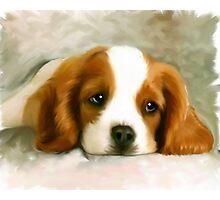 Pet Painting Photographic Print
