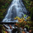 Fairy Falls III by Tula Top