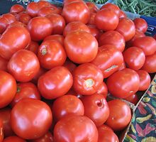 French Market Tomatoes by cschurch