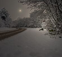 SILENCE AFTER THE SNOW STORM by leonie7