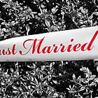 Just Married by Denise Abé
